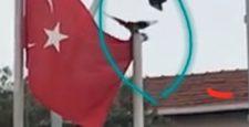 Türk Bayrağını Düzelten Karga İtfaiye Eri'nin Gözünden Kaçmadı