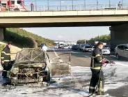 Anadolu Otoyolun'da Araç Yangını